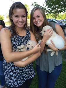 Gracie and Katie with puppies