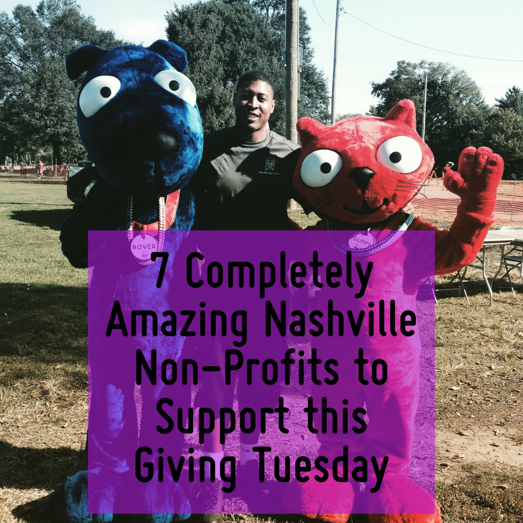 7 Nashville Non Profits to Support on Giving Tuesday